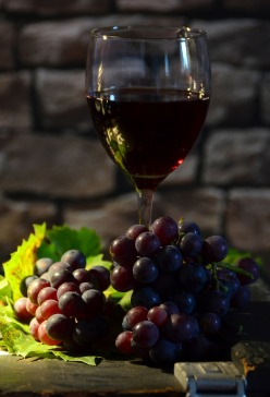 wine-glass-951223_1280